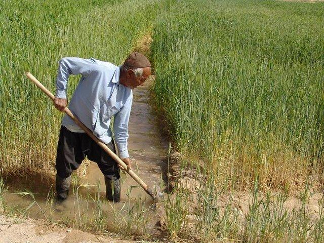 توصیههای هواشناسی کشاورزی برای روزهای ابتدایی آذرماه